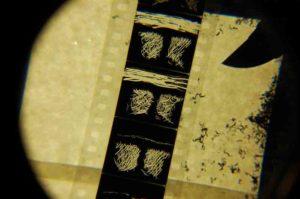 Film Loops